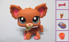 Littlest Pet Shop #1623 Chihuahua Puppy Dog RARE + 1 FREE Access. 100% Authentic