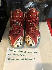fe8f83e8d4b7 Nike Lebron 11 2K14 Size 11.5 WORN GREAT CONDITION gold black cheetah what  the