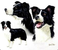 """BORDER COLLIE 3 DOGs on ONE 16 inch Fabric Panel to Sew. Actual pic is 8""""x10""""."""