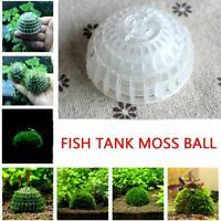 Natürlicher Aquarium-Moos-Ball-lebende Pflanzen-Filter für Garnelen-Aquarium.
