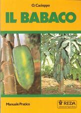 Il Babaco - [REDA]