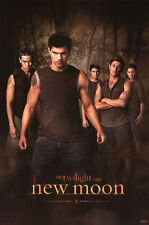 TWILIGHT Poster - New Moon WOLF PACK Full Size 24x36 ~ Jacob Taylor Lautner