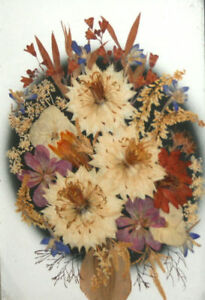 VINTAGE WALL HANGING DECORATION DRIED FLOWERS HERBARIUM FLORAL COLLAGE