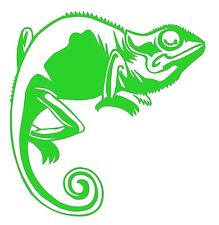 CHAMELEON window,glass,wall art,car,caravan,camper outdoor vinyl decal.26colours