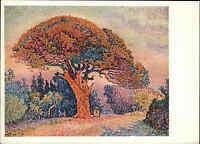 1932 Russland Künstlerkarte Kunst Art Postcard Künstler Siniac Fichte The Pine