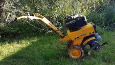 Electrolux mep Marazzini Ursus 6 Benzin Motorhacke Gartenhacke Bodenfräse