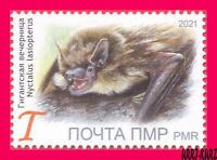 TRANSNISTRIA 2021 Nature Fauna Animals Flying Mammals Bat 1v MNH