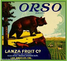 Los Angeles Orso Grizzly Bear Orange Citrus Fruit Crate Label Art Print