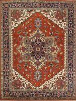 Hand-Knotted Traditional Indo Heriz Serapi Oriental Classic Area Rug 8x10 Carpet