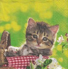 3 Cocktail Papier Servietten Napkins (87-13)  kleine Katze