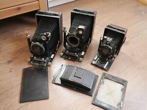 3 Voigtlander folding cameras Bergheil