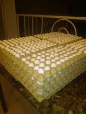 50 Premium Northern Bobwhite Quail fertile hatching eggs, conservation,