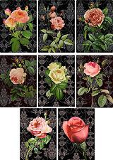 Vintage inspired Roses black background note cards set of 8 with envelopes