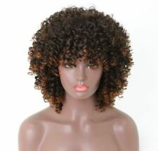 15'' Afro Kinky Curly Ombre Wigs For Black Women African Synthetic Full Head Wig