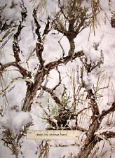True Timber Snow Tree Fabric Cotton Trees Twigs Camo Snow Camouflage - Yard