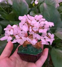 AAA+ Lucky Tree!!! Natural Rose Quartz Crystal Gem Tree