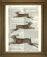 LEAPING HARES ART: Brown Animal Print, Wall Hanging on Vintage Dictionary Paper