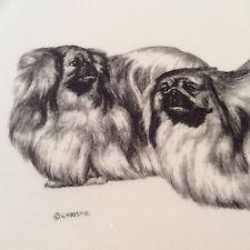Robert A. Christie Schneider Reproductions ~Maltese Dog Plate~ Animal Pet Puppy
