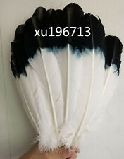Free Shipping 10pcs beautiful white plus black turkey feather feathers 25-30 cm