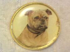 "1"" Puppy Dog Bulldog Canine Gold Metal Shank Sew Sewing Button CD67"