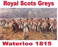 Royal Scots Greys  Concert shirt Waterloo