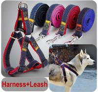 Harness+Leash / Collar Jean Style Comfy Dog Pet Puppy Lead Control Heavy Duty