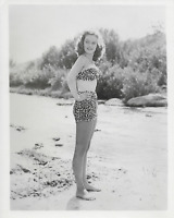 Vintage   Original Glossy Photo of Hollywood Movie Star Alexi Smith 8 x10 NM