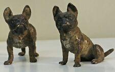 Bronze de vienne ancien couple de Bouledogue français fin XIX ème.Miniature rare