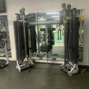 TechnoGym Selection Radiant Dual Adjustable Pulley DAP Commercial Gym Equipment