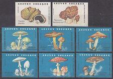 POLAND 1962 Matchbox Label - Cat.Z#301II/308II set, Poisonous fungus.
