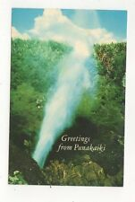 Punakaiki Blowholes Westland New Zealand 1970 Postcard 449a