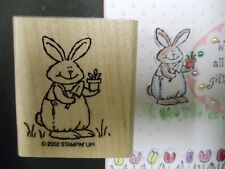 Stampin Up rubber stamp Garden Bunny Pal i dig you~  Fun sweet Spring Easter