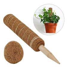60cm Plants Support Totem Pole Coco Coir Poles Support Indoor Plants Grow Upward