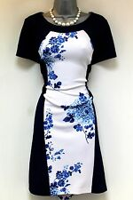 Ronni Nicole Floral Colour Block Panel Evening Occasion Dress Size 12
