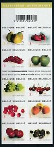 [G11031] Belgium 2007 Fruits good sheet very fine imperf