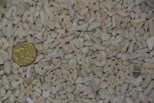 5kg Coral sand rubble 5-9 mm substrate aquarium tank marine EXPRESS AIR FREIGHT