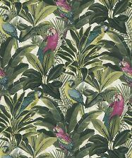 Tropical Forest Parrots Birds. Grandeco Exotic Pink Wallpaper A11504