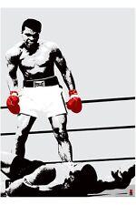 RIESEN Poster MUHAMMAD ALI - Red Gloves ca100x140cm NEU XL859