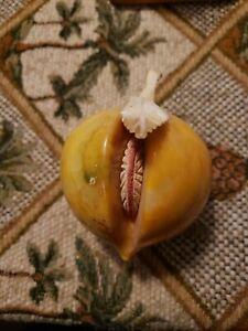 Vintage Italian Alabaster Marble Stone Fruit Peach  Mid Century