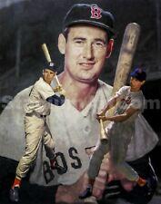 Ted Williams Boston Red Sox MLB Baseball Stadium Field Art 03 8x10 - 48x36