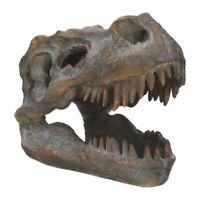 Resin Replica Freestanding T-Rex Skull 16cm