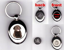CHOCOLATE LABRADOR PUPPY TROLLEY COIN TOKEN KEYRING - PHOTO DOG LOVER GIFT
