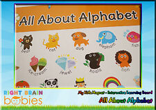 Kids Magnet All About Alphabet - Educational Interactive Learning Magnetic Board