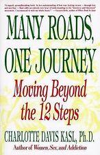 NEW Many Roads One Journey: Moving Beyond the 12 Steps by Charlotte Davis Kasl
