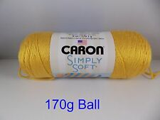 Caron Simply Soft Yarn Aran Knitting Crochet Wool - No Dye Lot Yarn - 60 Colours