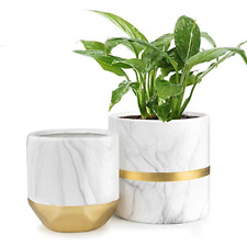 "Homenote White Ceramic Flower Pot Garden Planters 6"" Pack 2 Indoor, Plant with"