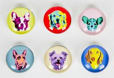 Set of 6 Glass Magnets Dachshund Chihuahua Golden Retriever Boston Terrier Dogs
