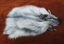 "PLATINUM Silver Fox Fur Head Skin L 18"" Fashion Accessory Craft Free USA Ship"