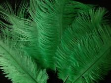 """5 pcs Ostrich Feathers Millinery & Crafts 6-8"""" Emerald Green"""