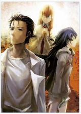 Steins;Gate Clear Poster Altair at the Apoapsis of Infinity Kurisu Makise anime